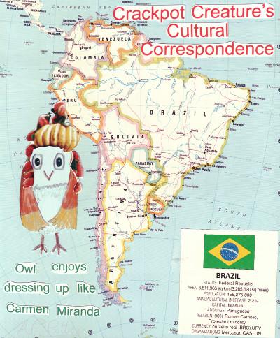 Owl in Brazil