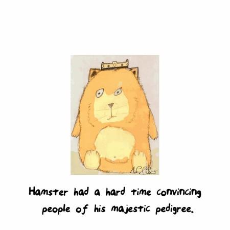 hamster1000