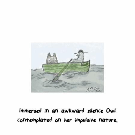 owlcat1000