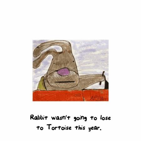 rabbit1000