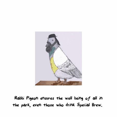 pigeon1000