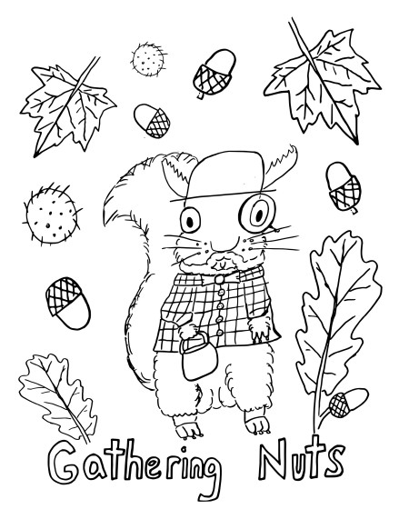 Squirrelcolouringbook